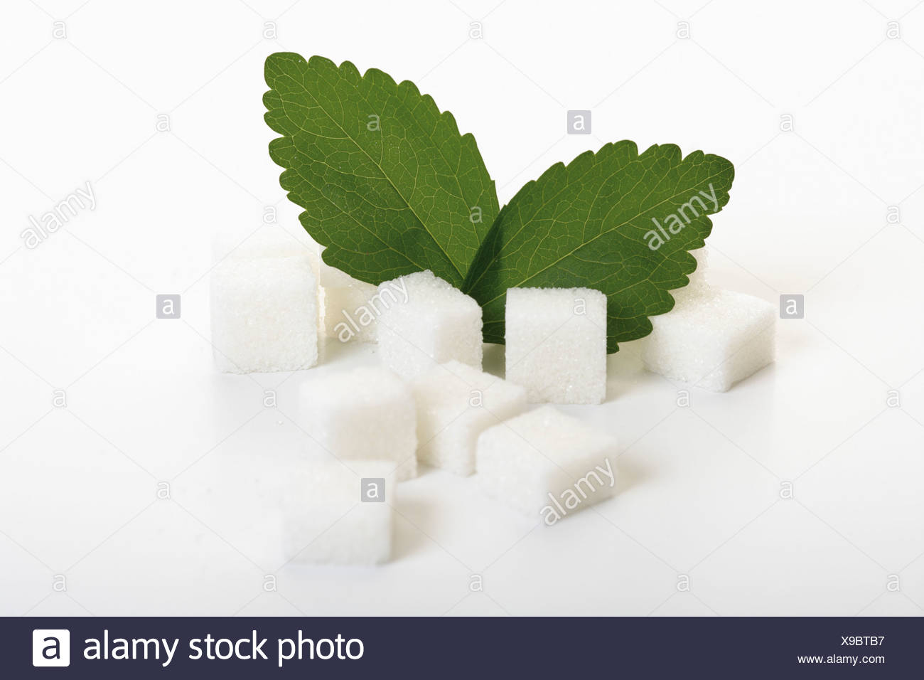 Sugar lumps and stevia leaves on white background - Stock Image
