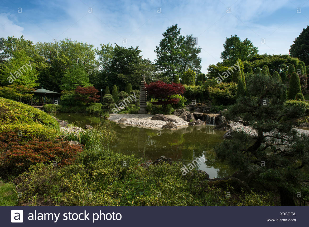 Japanese Garden, Rheinaue leisure park, Bonn, North Rhine-Westphalia - Stock Image