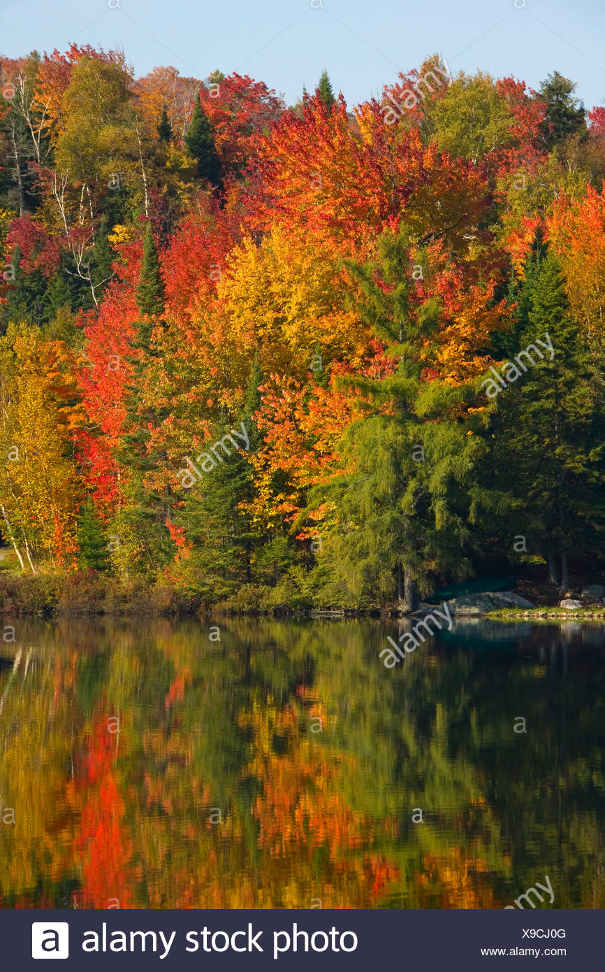 Body of water in autumn - Stock Image