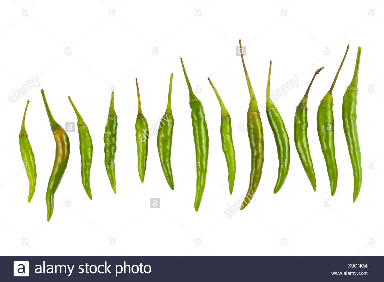 hot green chili peppers - Stock Image