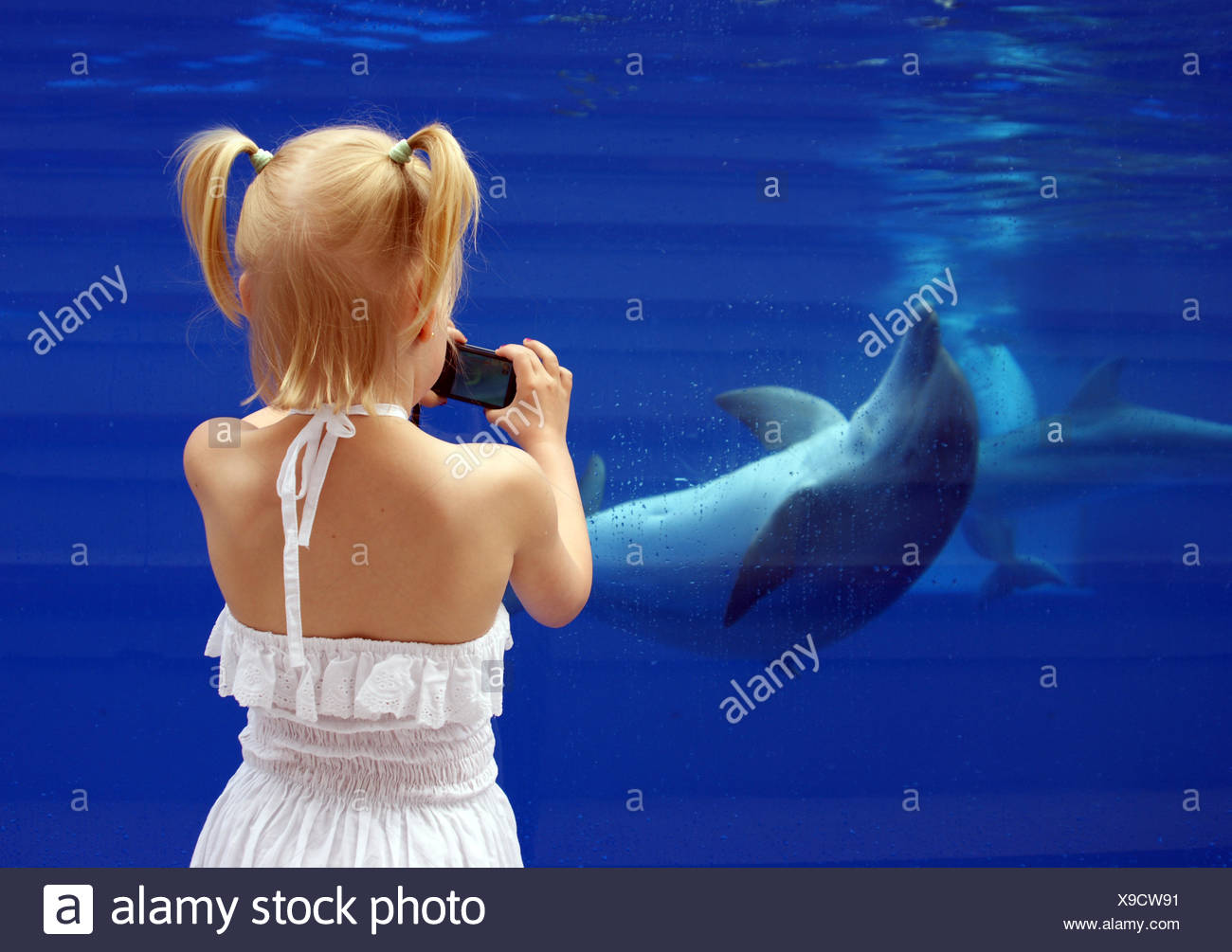 girl with dolphin - Stock Image