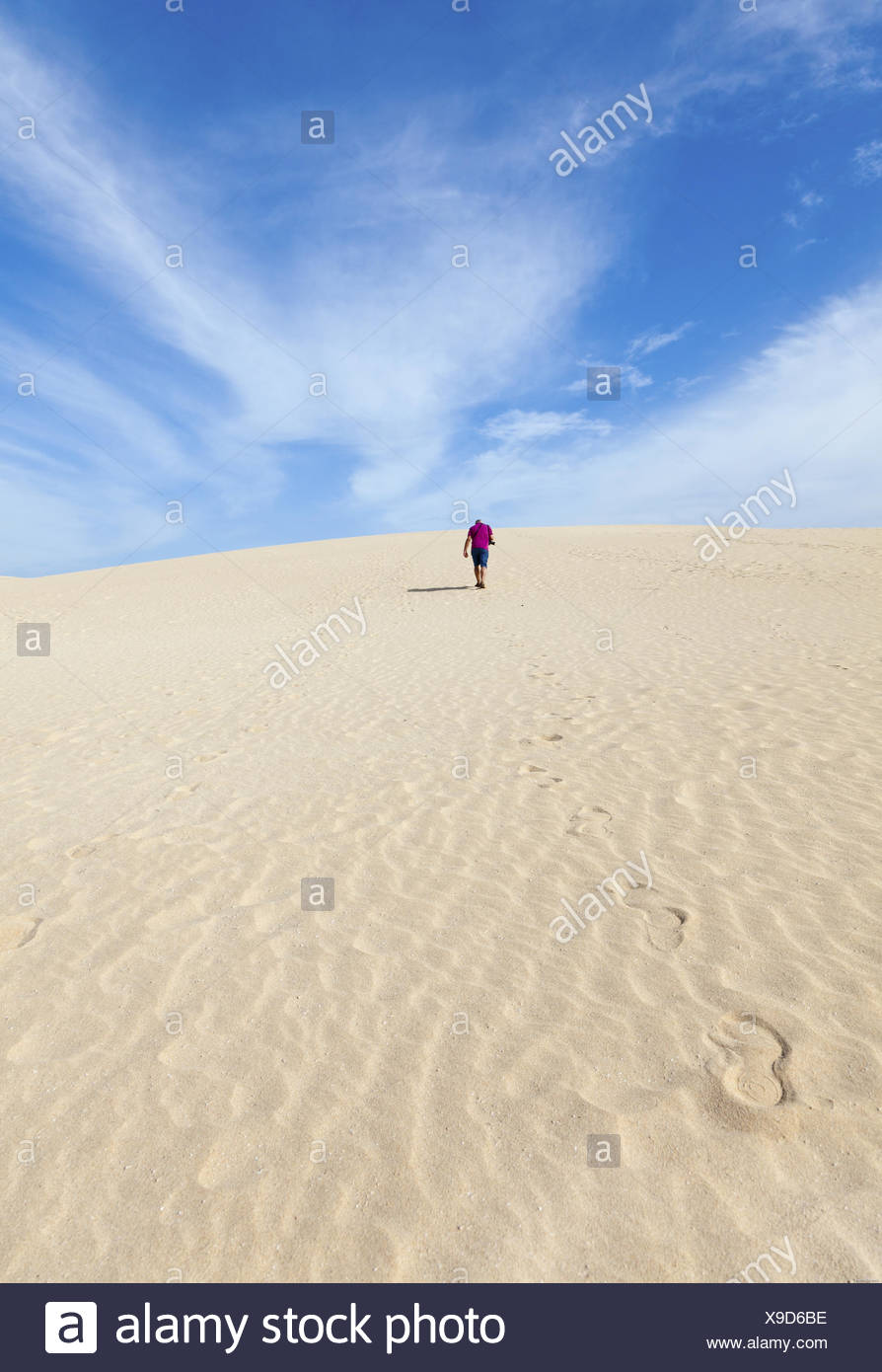 In the dunes of El Jable - Stock Image