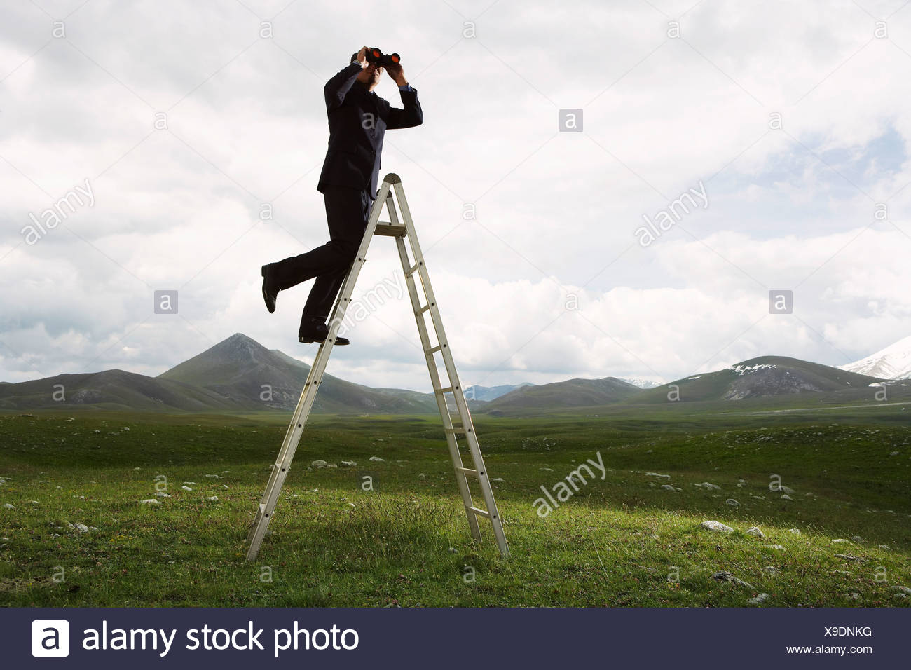 Businessman Looking into The Distance - Stock Image