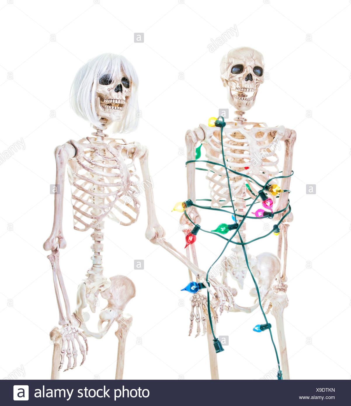 Christmas Skeleton.Captive Christmas Skeleton Stock Photo 281202537 Alamy