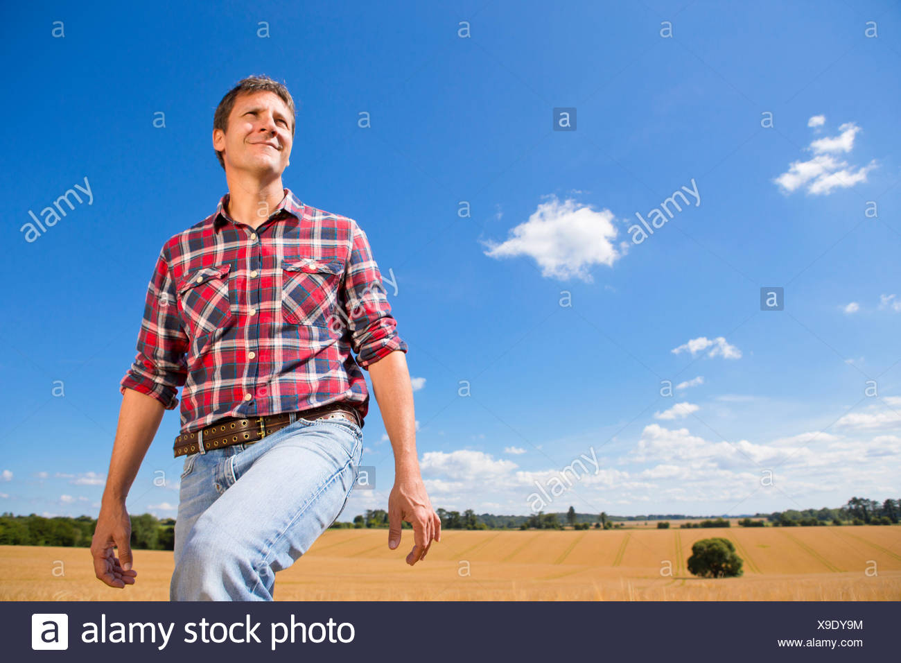 Smiling farmer walking in sunny rural barley crop field in summer - Stock Image