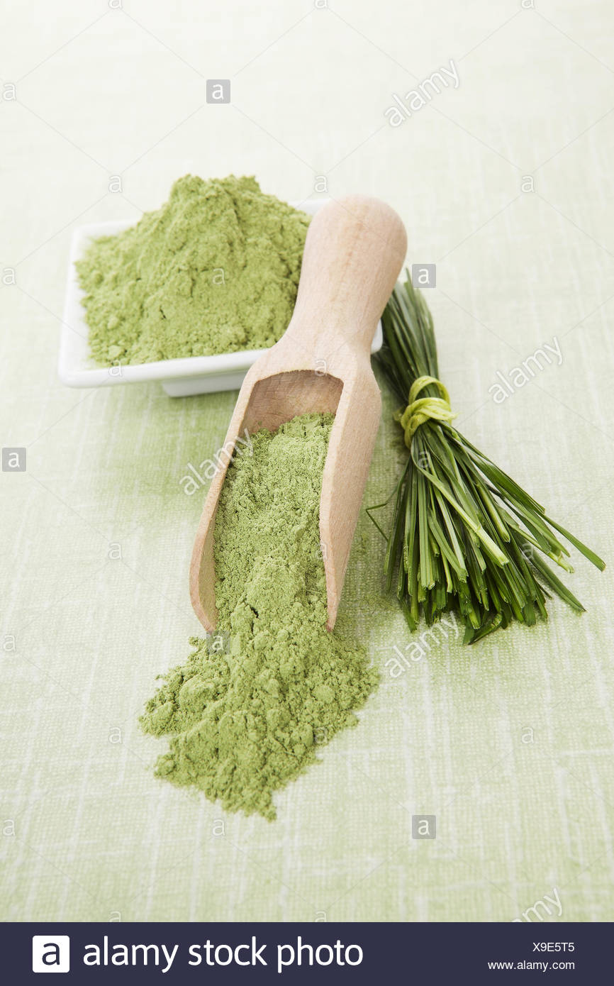 Superfood. - Stock Image