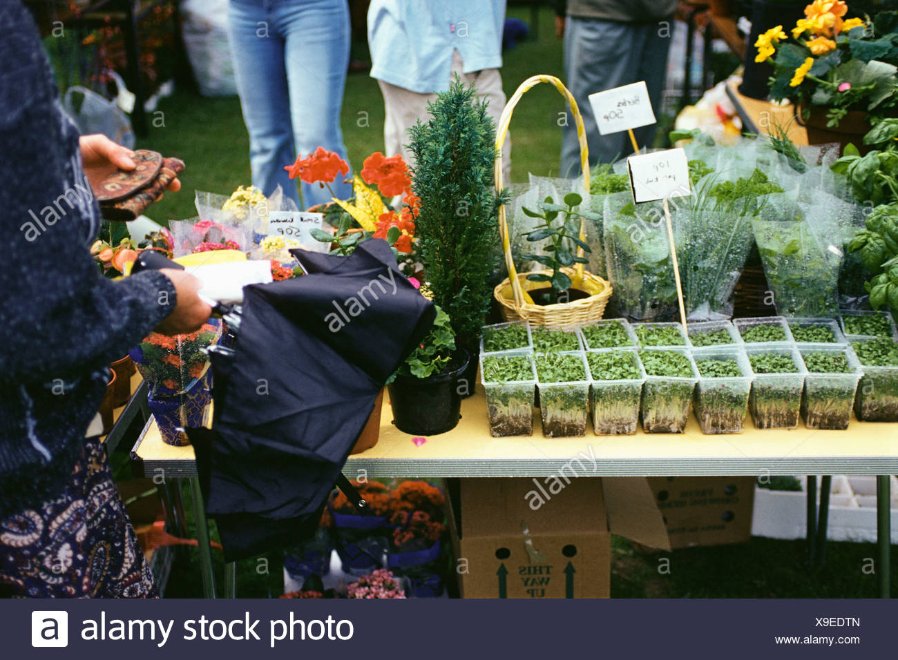 Flower stall at fete - Stock Image