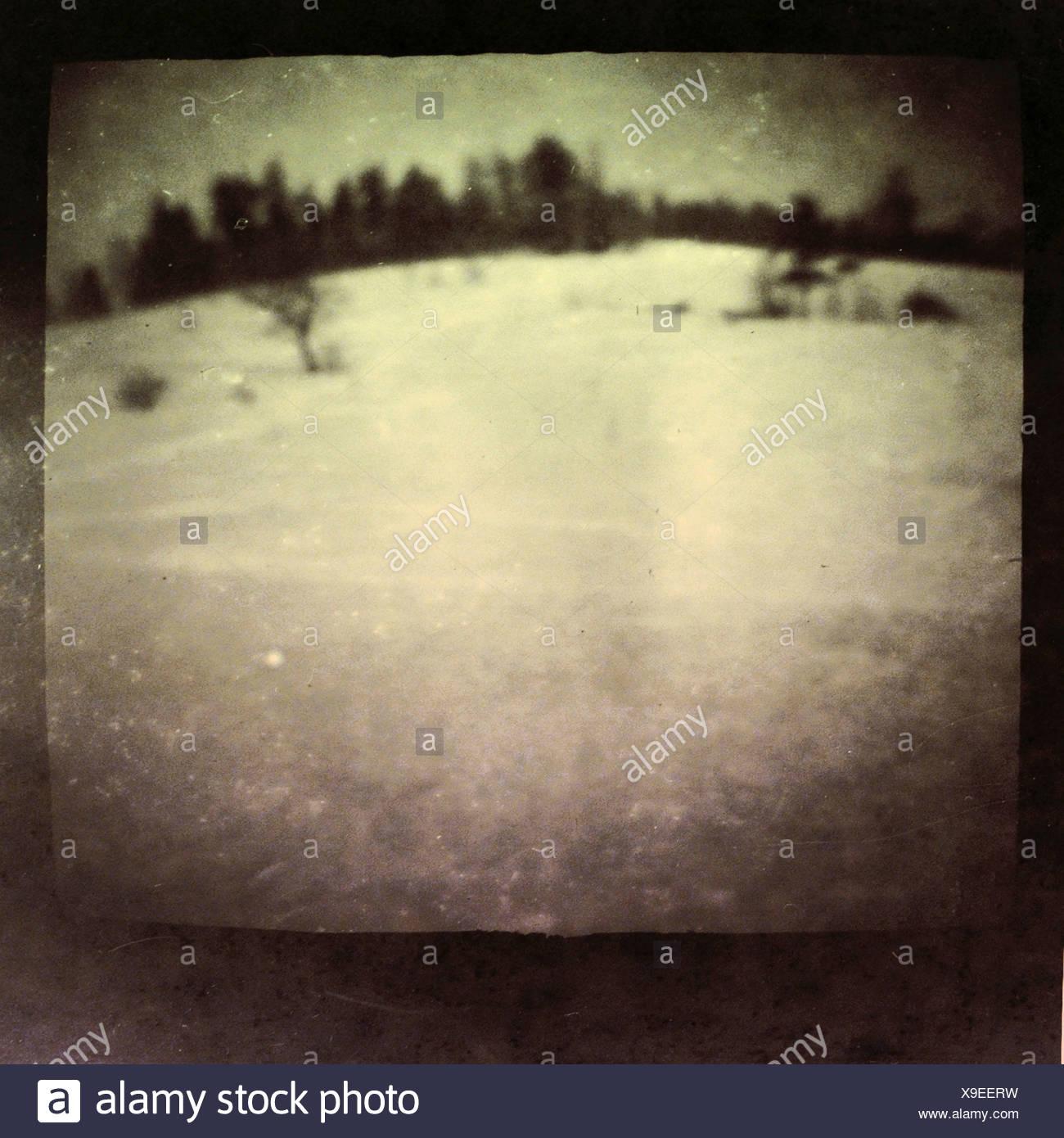 A blurred winter snow scene - Stock Image