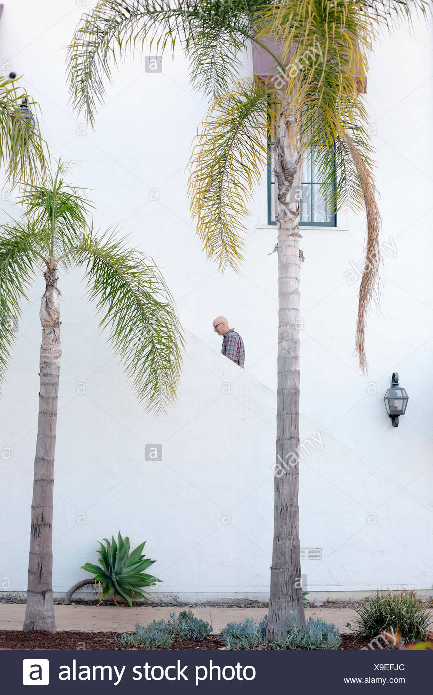 Man walking up a staircase in the distance, palm trees. - Stock Image