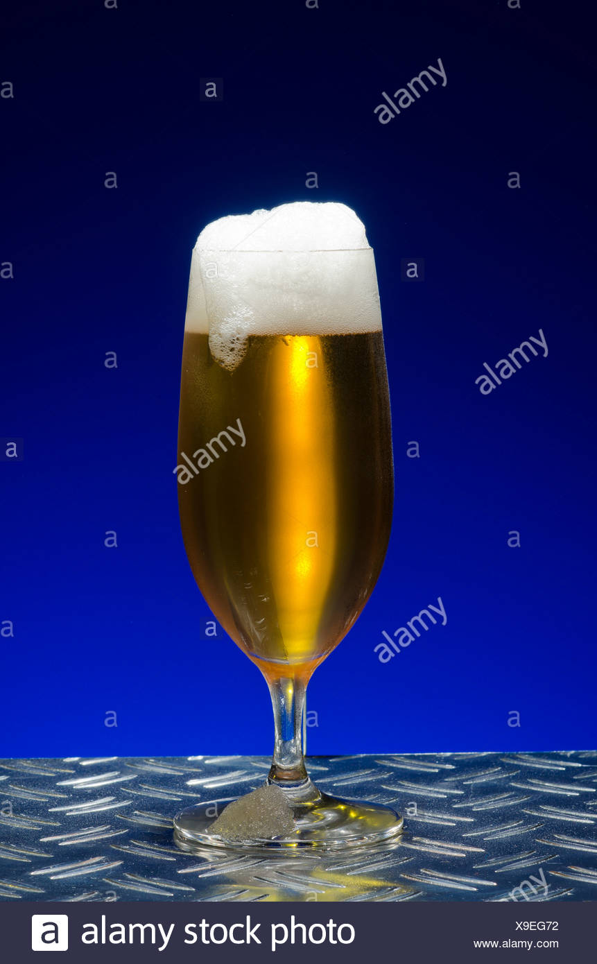 Pilsener beer, beer with a head in a traditional pils glass, on metal table - Stock Image