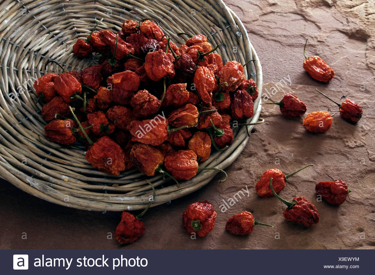Dried mini peppers (Capsicum), tipped from a wicker plate on sandstone Stock Photo