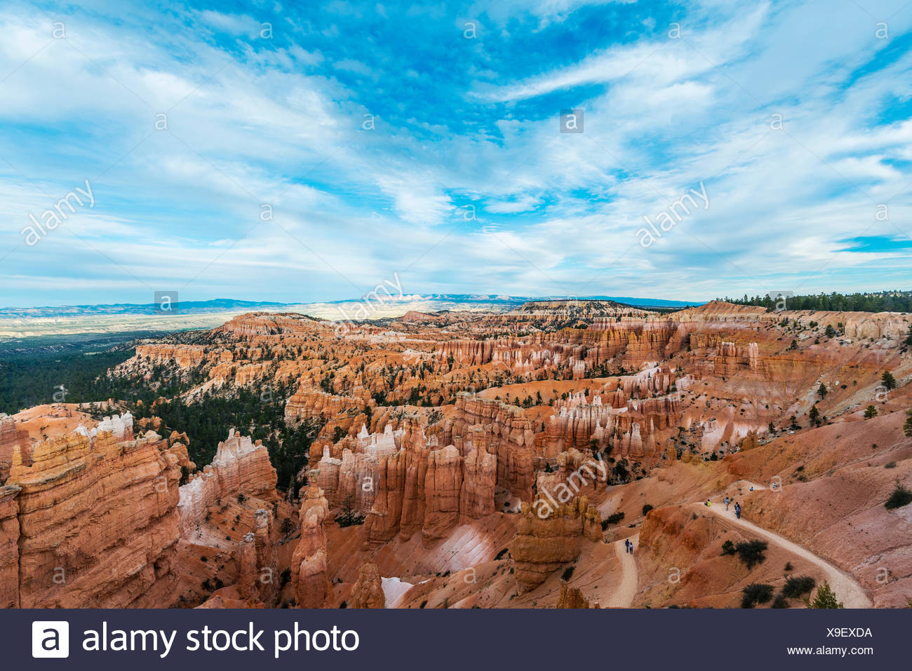 View of Bryce Canyon, reddish rocky landscape with Hoodoos, sandstone formations, Bryce Canyon National Park, Utah, USA - Stock Image