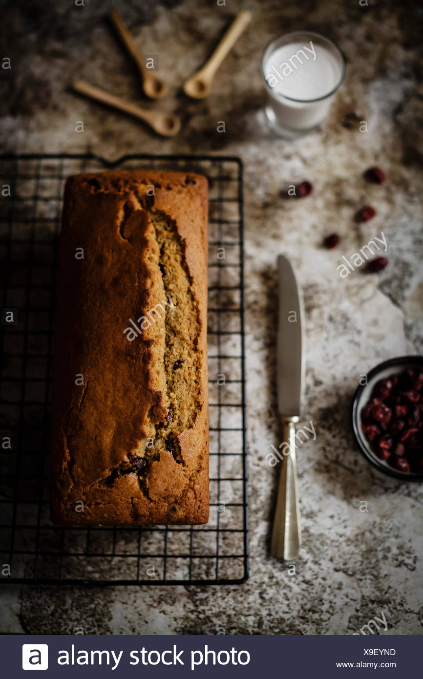 Soft and moist butterless loaf with coconut flour, coconut sugar and coconut milk, enriched with a lot of sweet dried cranberries. Perfect for a yummy - Stock Image