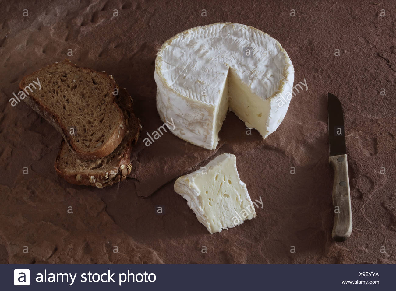 French soft cheese on sandstone - Stock Image