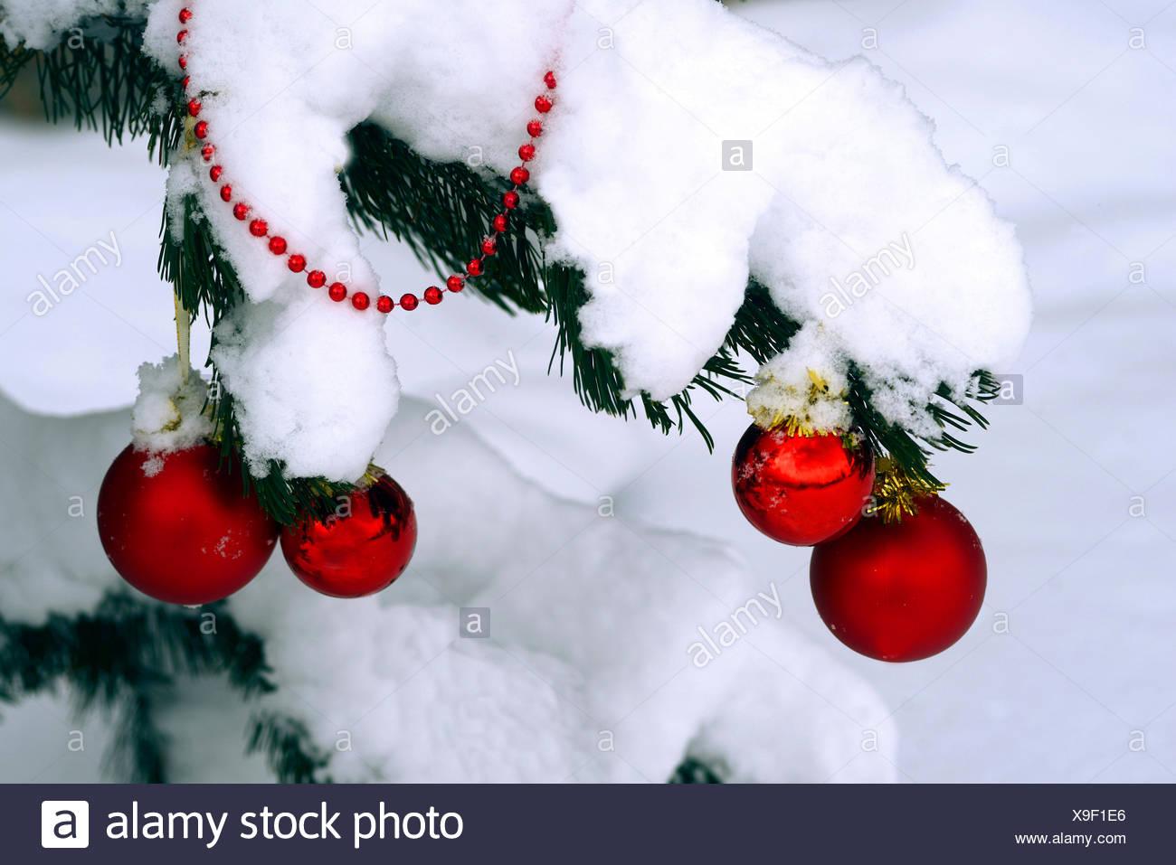 Christbaumkugeln At.Christbaumkugeln An Einem Verschneiten Tannenzweig Frankreich