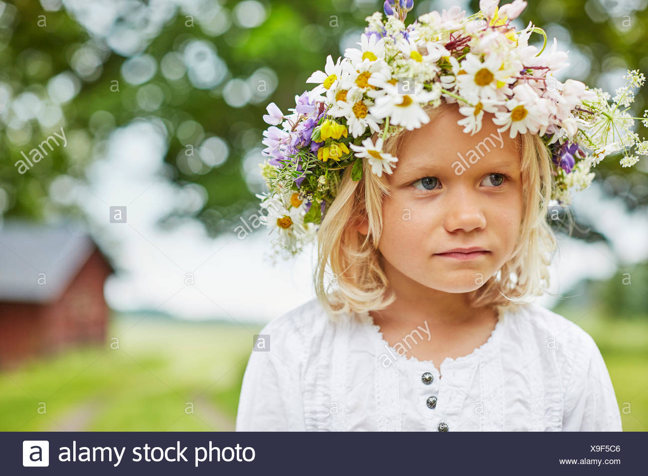 Flower crown girl stock photos flower crown girl stock images alamy girl wearing a flower crown stock image izmirmasajfo
