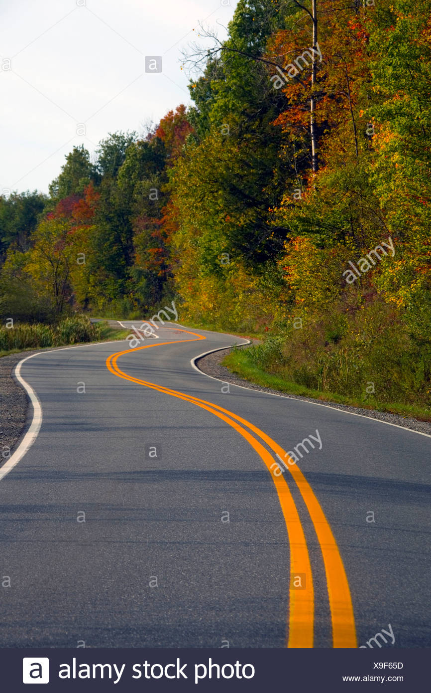 Fall colour and country road - Stock Image