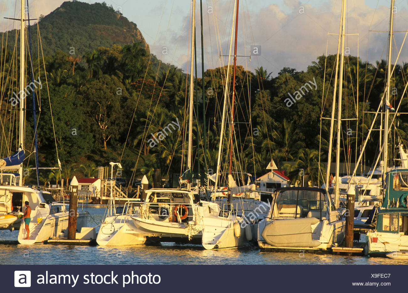 Hamilton Island yachting haven, Australien, Queensland, Hamilton Island, Barrier Reef - Stock Image