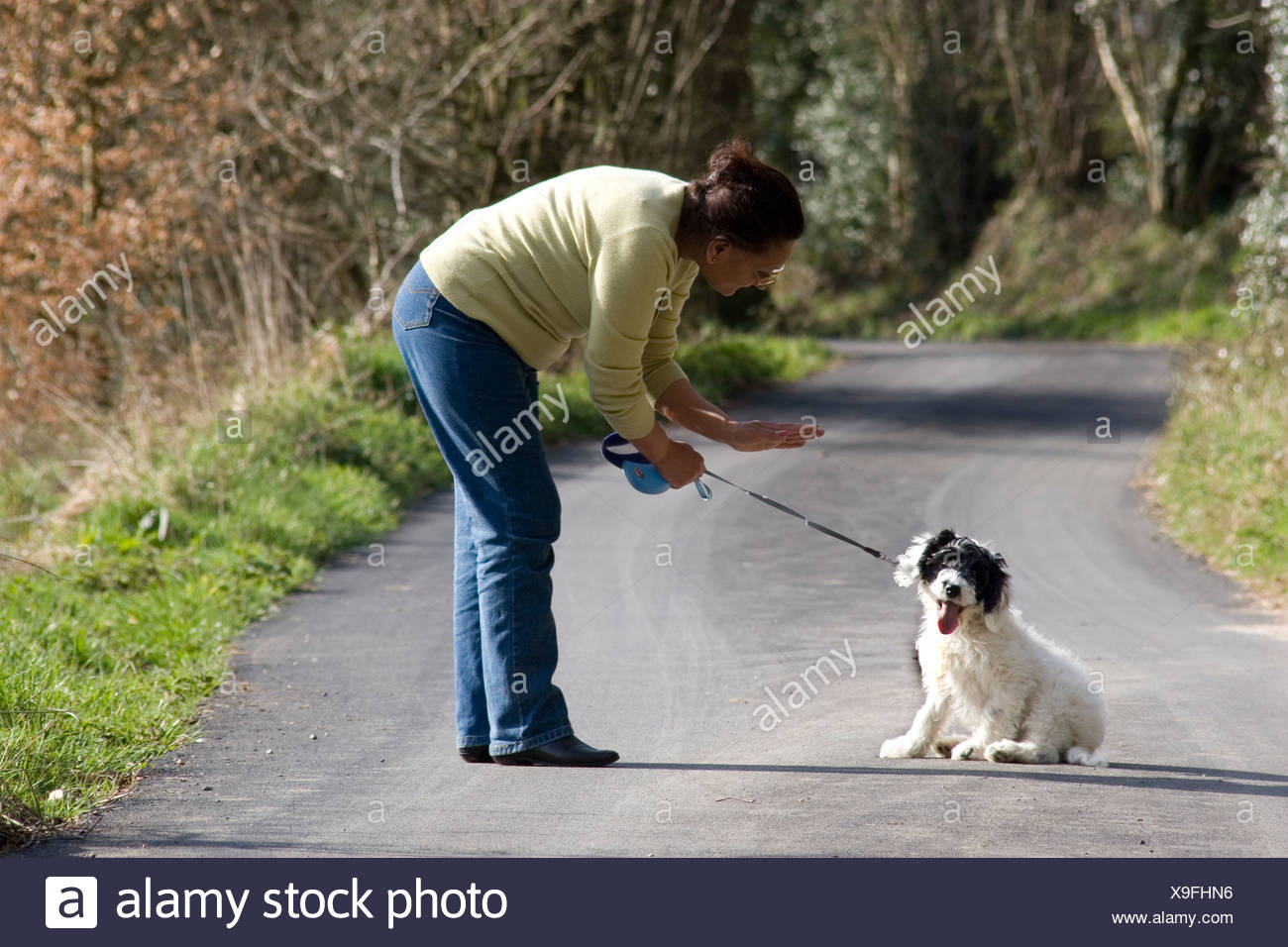 middle aged Asian woman training her puppy to sit and stay - Stock Image