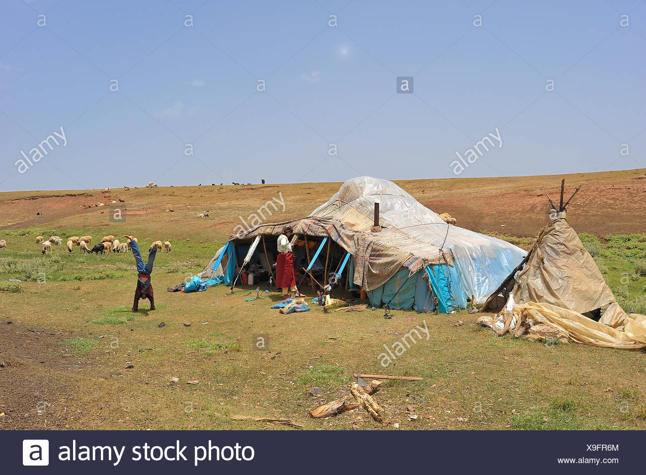 Nomad's tent covered with plastic sheeting against the rain, nomad boy doing a handstand, Middle Atlas, Morocco, Africa - Stock Image