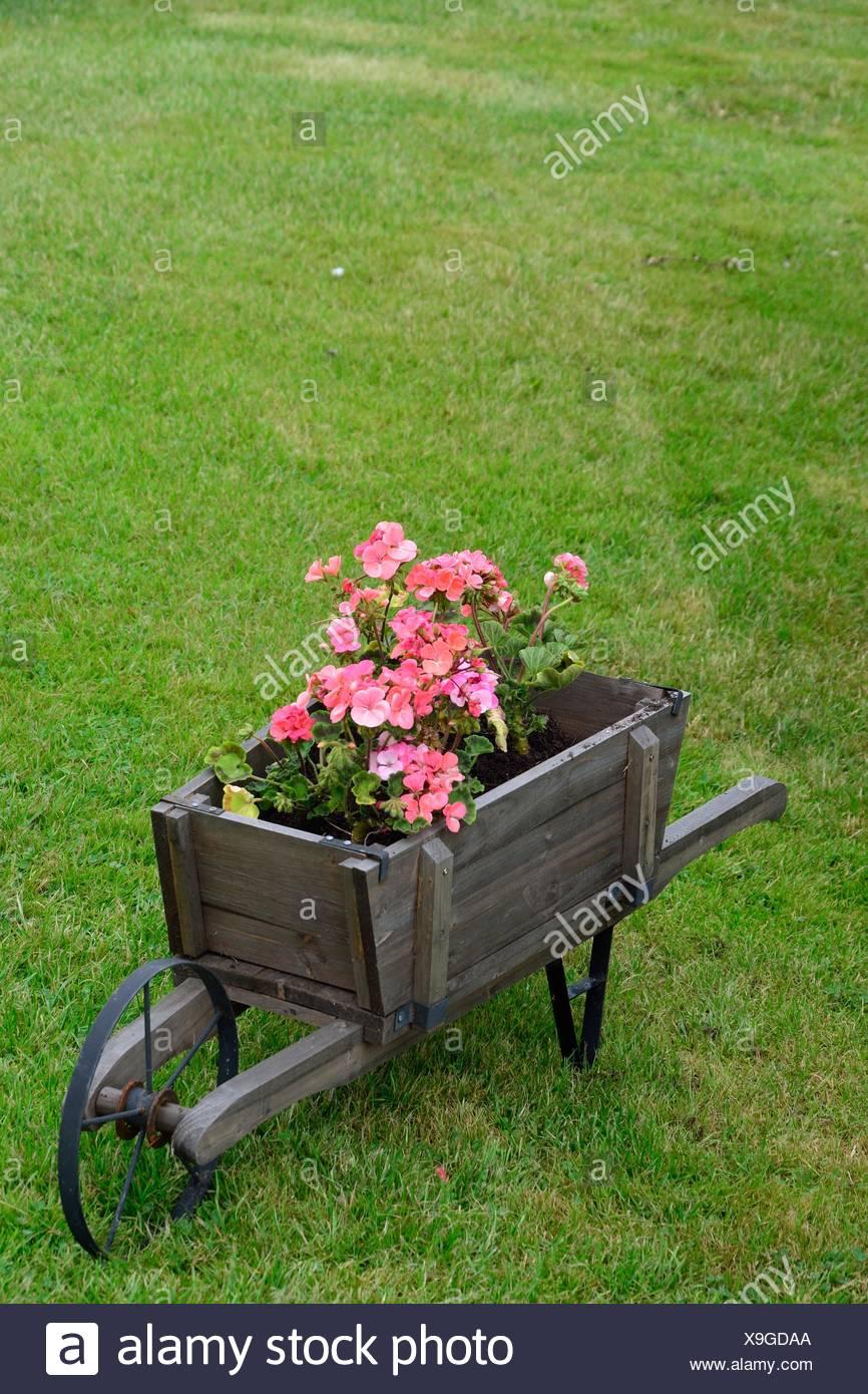 Pink Wagon Stock Photos & Pink Wagon Stock Images - Alamy
