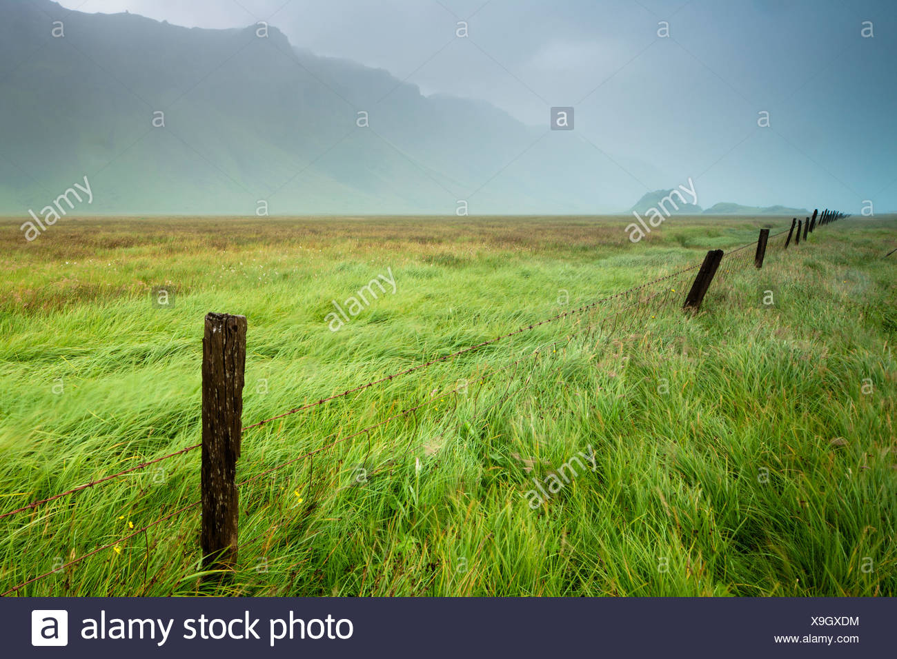 Fog Over A Field With Long Grass And Wooden Fence Posts With The Mountains In The Background; Iceland - Stock Image