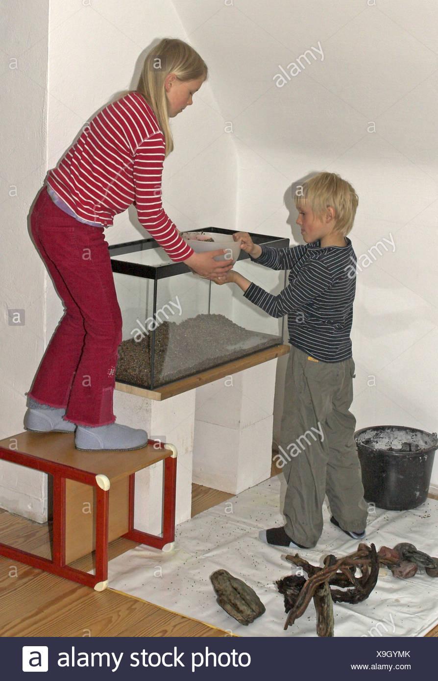 constructing an aquarium; children  dumping pebbles in the empty aquarium - Stock Image