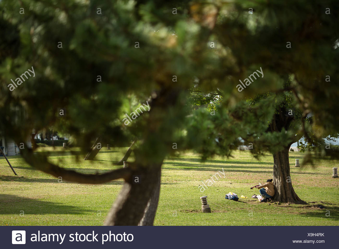 Japan, Kanagawa, Yokohama, Nishi ward, Picnic in park - Stock Image