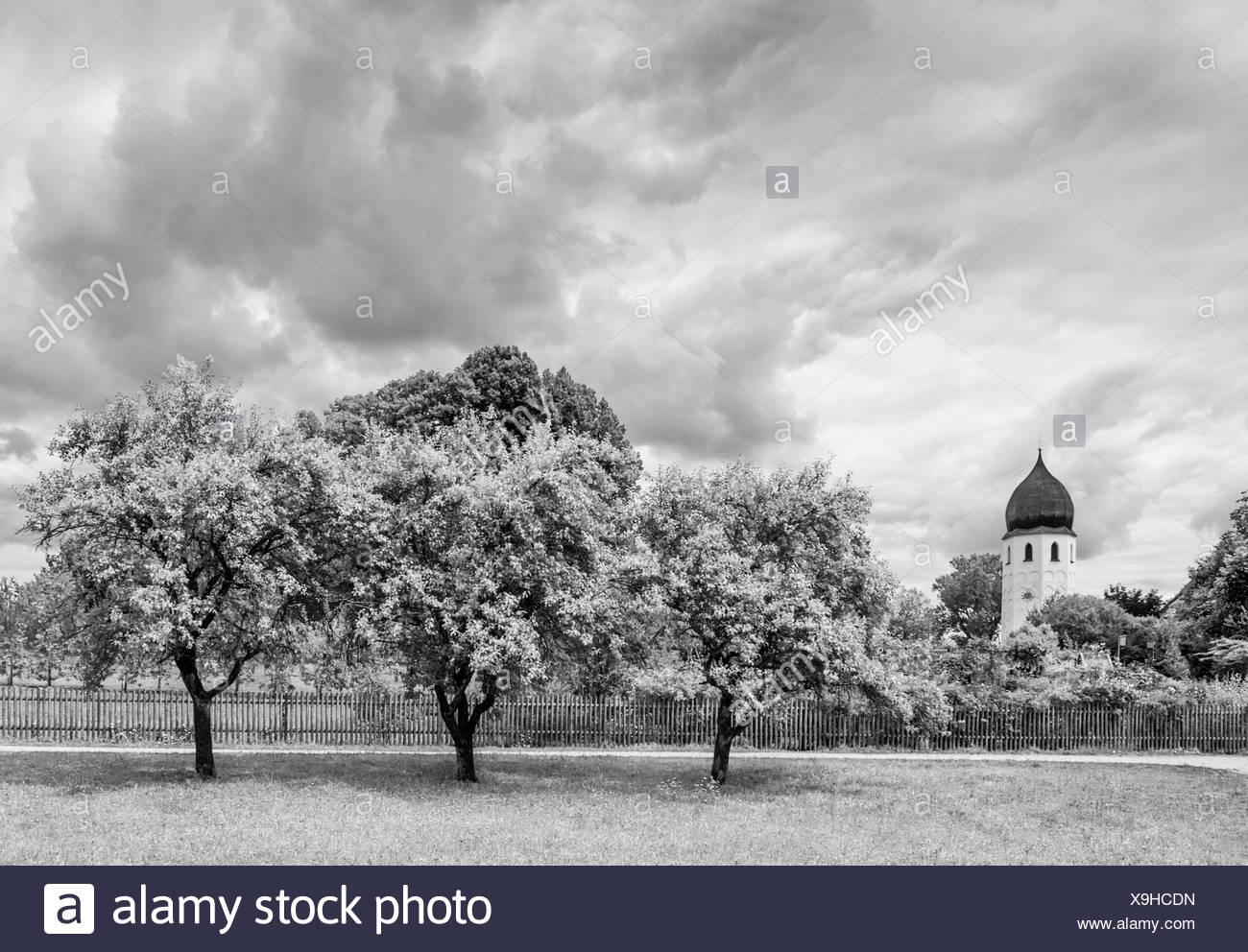 abbey frauenwoerth,frauenchiemsee,chiemgau,bayern,germany Stock Photo