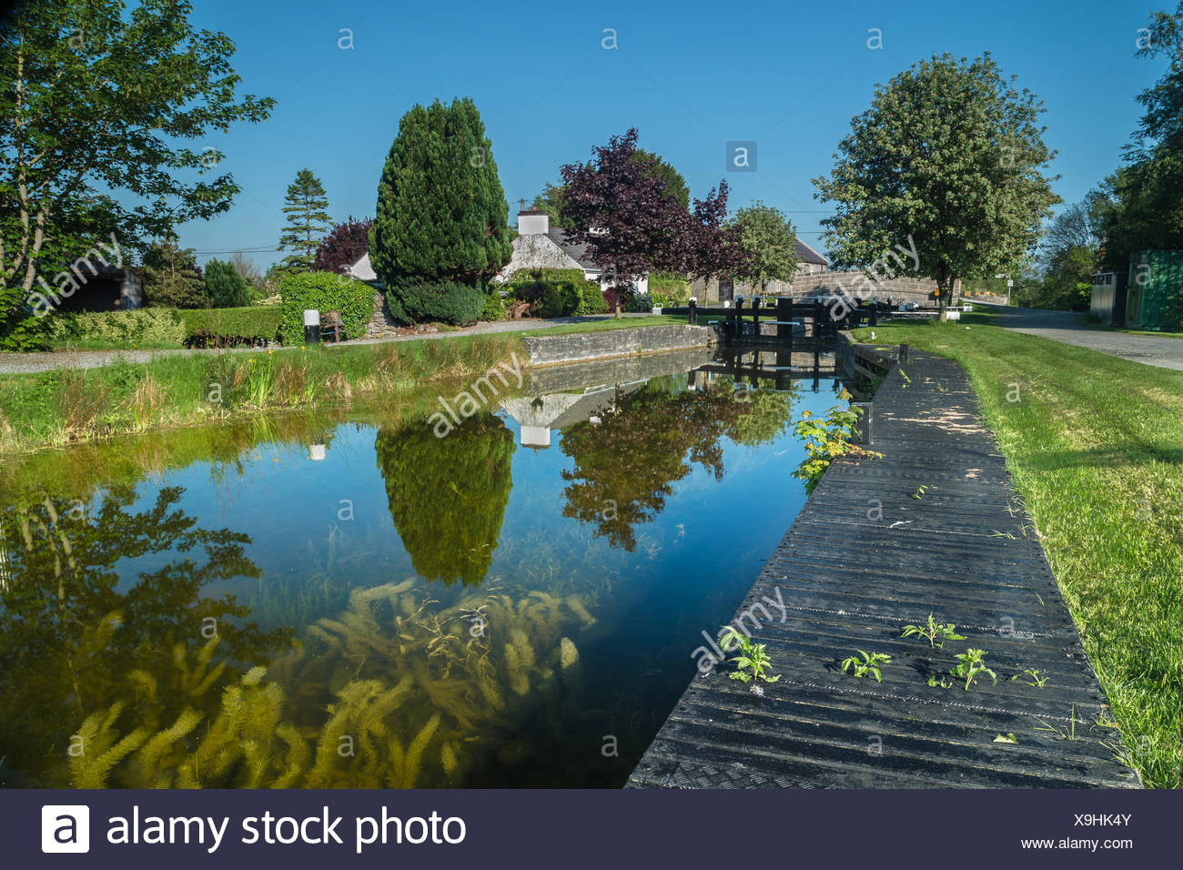 Ireland, County Offaly, Belmont, Belmont Lock, View of canal in summer morning - Stock Image