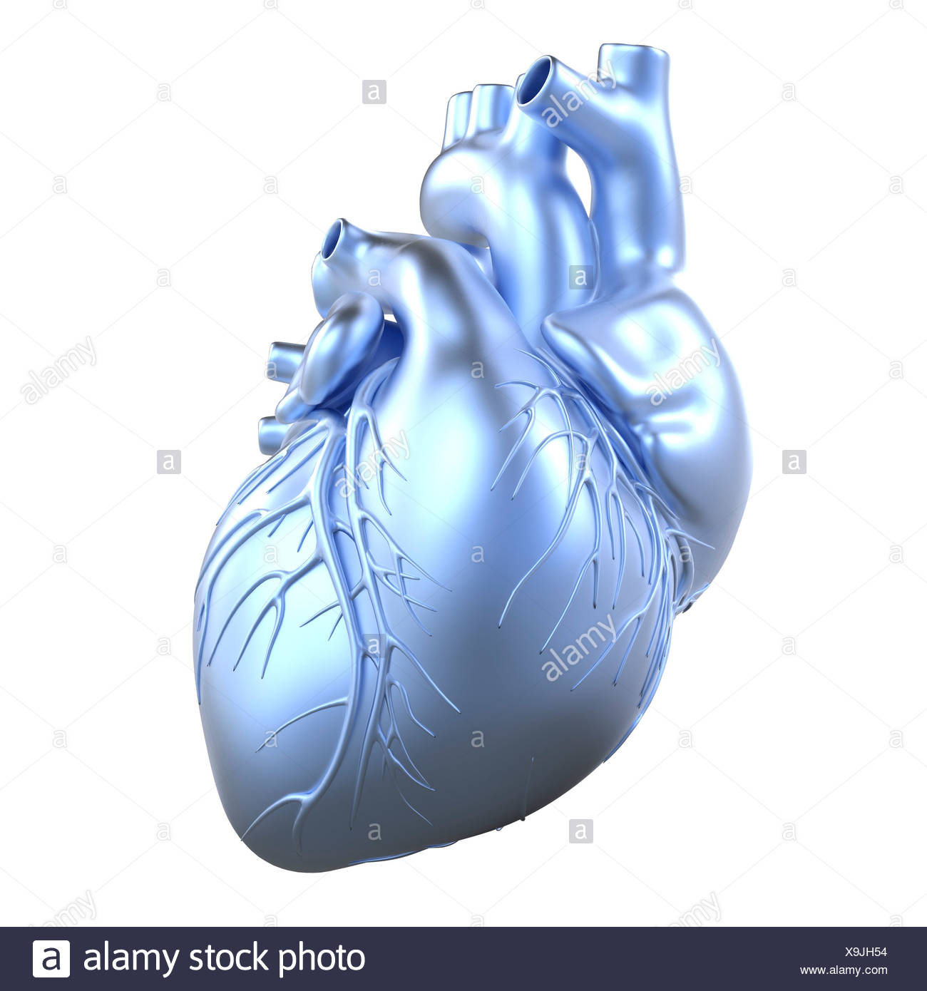 Heart with coronary vessels, artwork - Stock Image