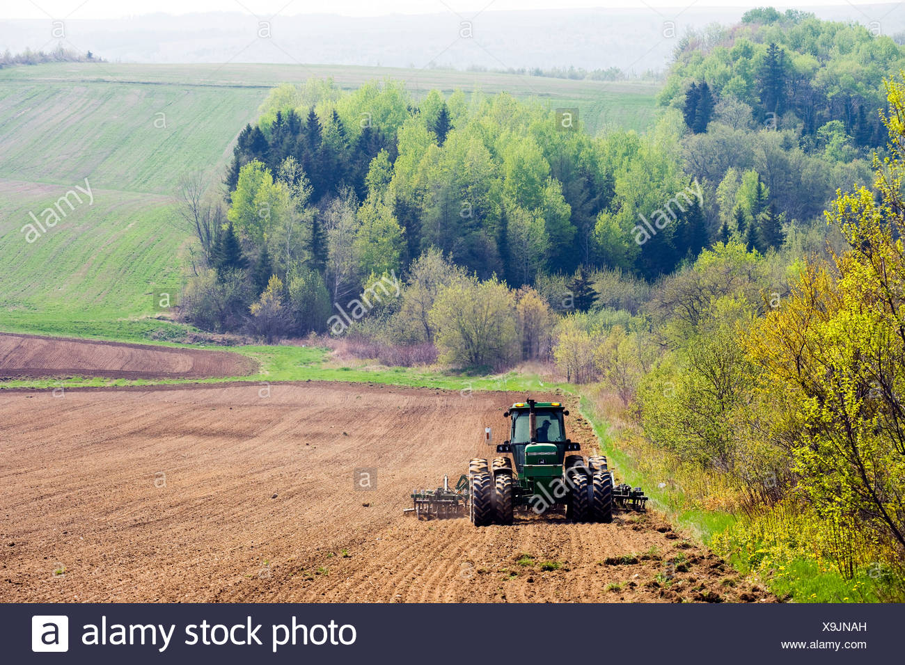 Harrowing potato fields in spring, Florenceville, New Brunswick, Canada, Agriculture - Stock Image
