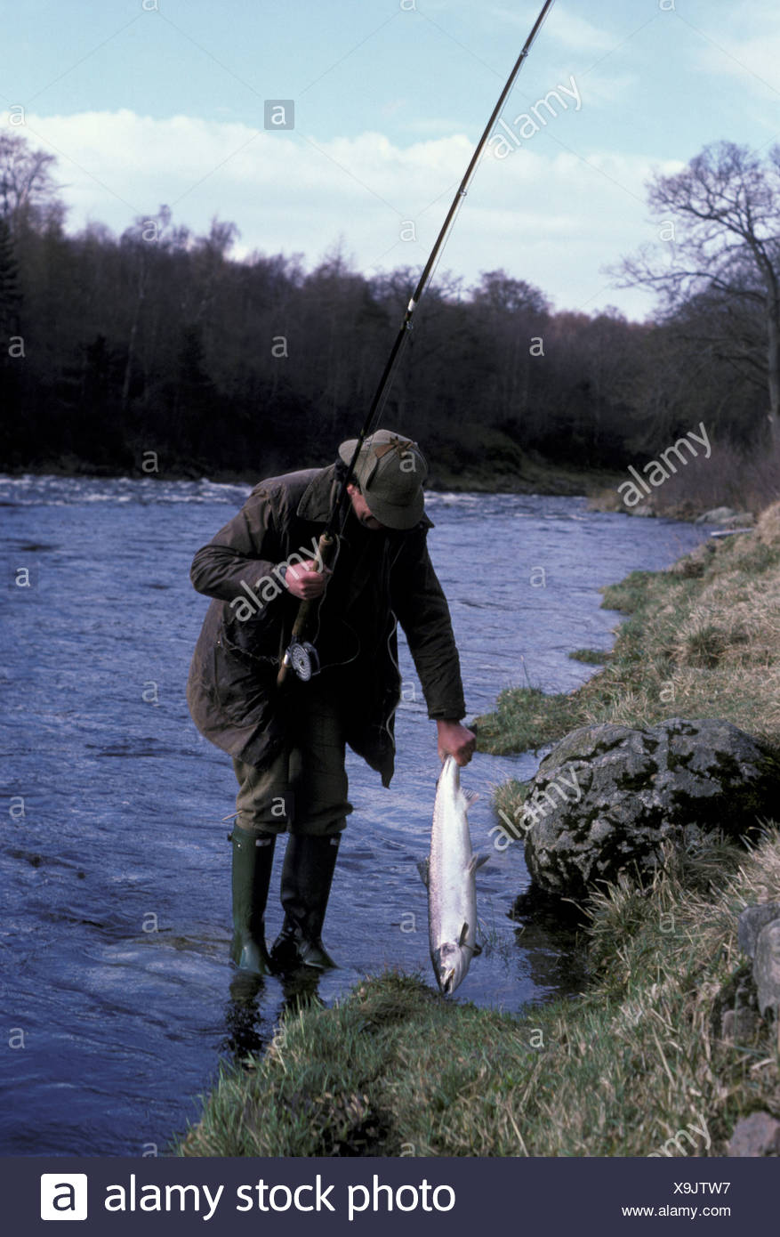Sports Pastimes Tailing a Springer Aberdeenshire Dee - Stock Image