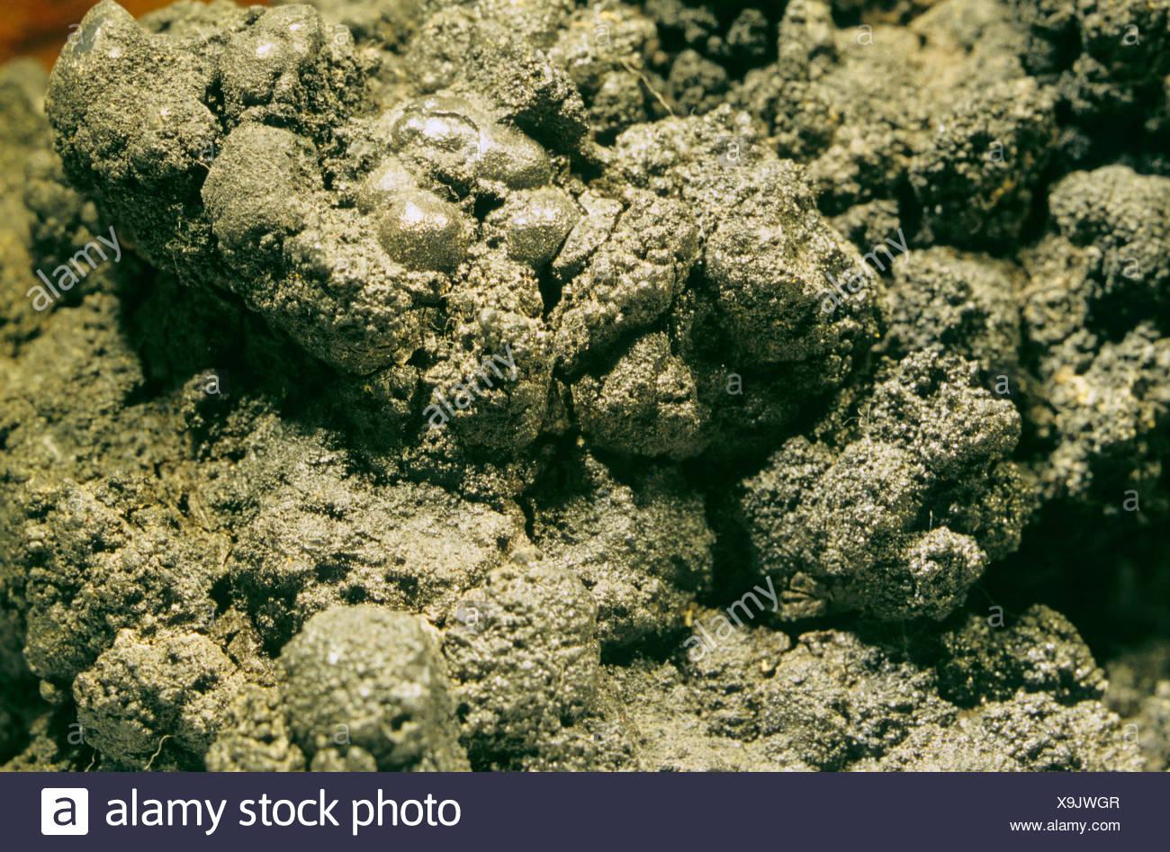 manganese nodules from deep-sea - Stock Image