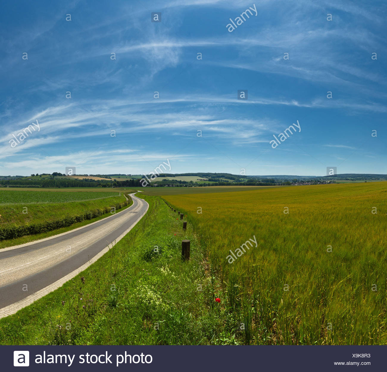 Netherlands, Holland, Europe, Gulpen, Hilly, Hill, country, landscape, field, meadow, summer, road, hills, - Stock Image