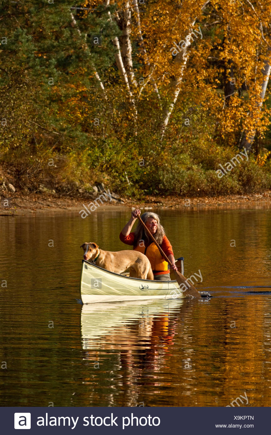 Mature woman paddles canoe with dog, Oxtongue Lake, Muskoka, Ontario, Canada. - Stock Image