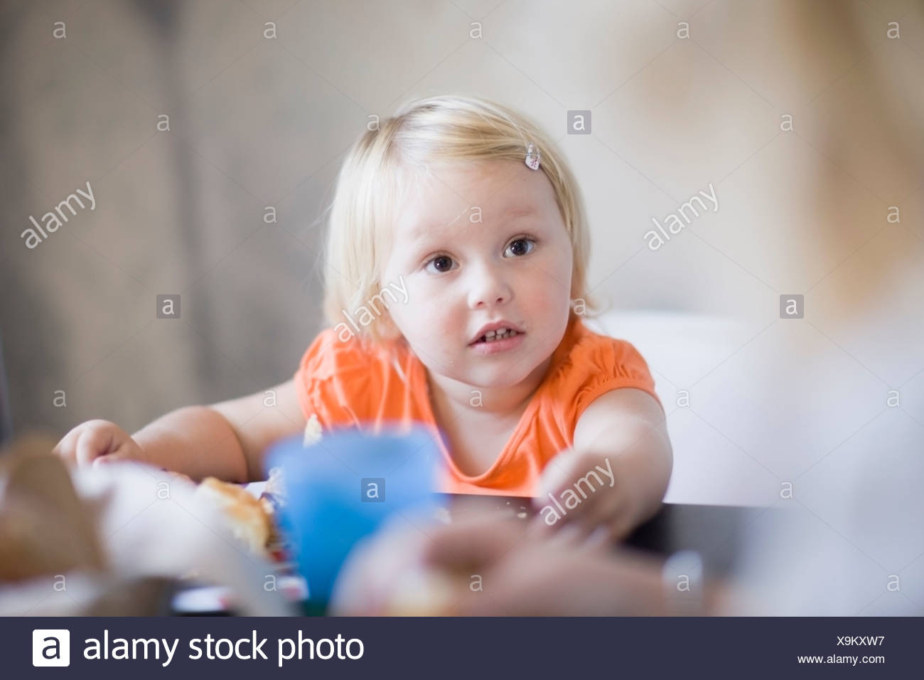 Toddler girl eating at dinner table - Stock Image