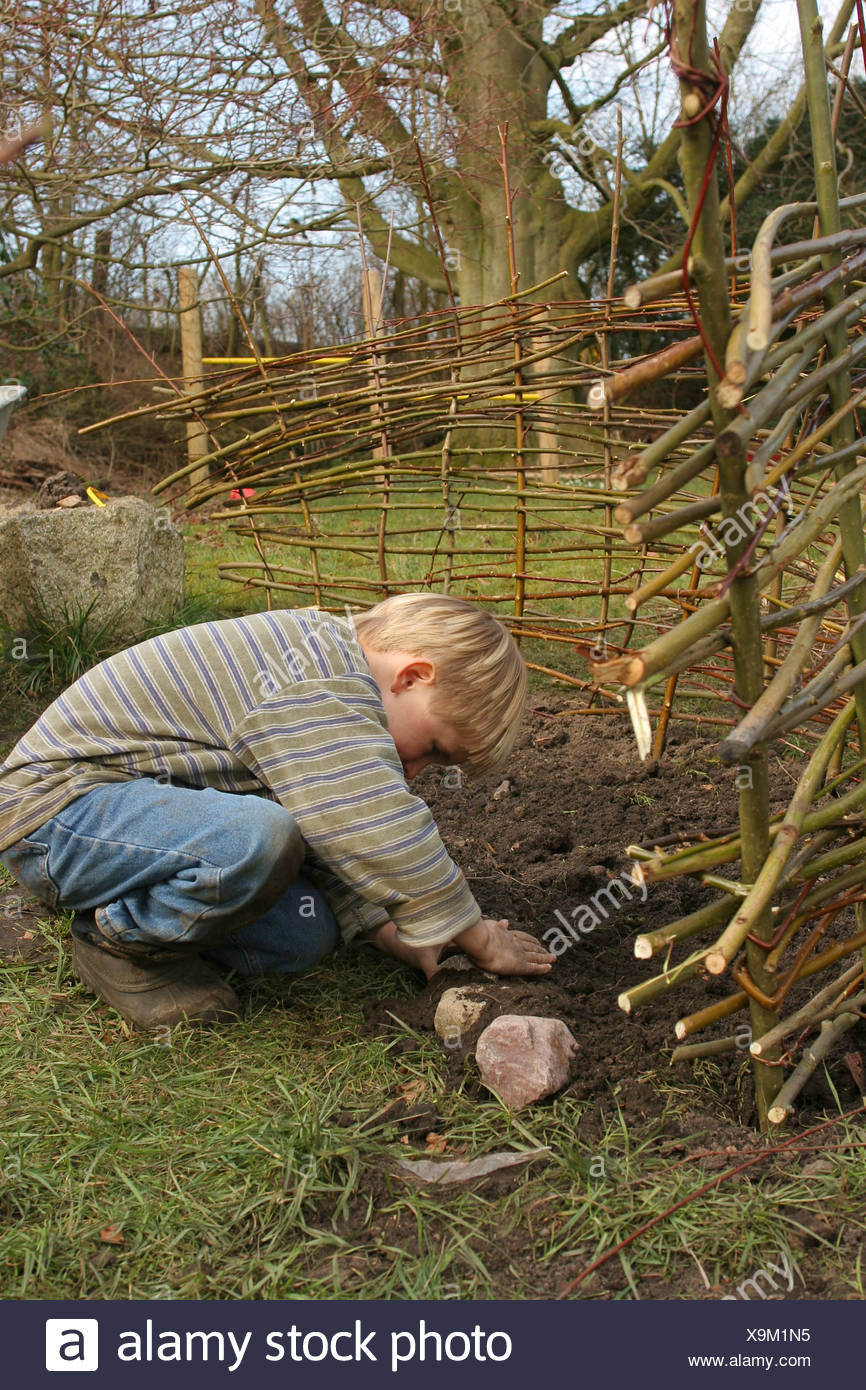 Little Boy Creating His Own Vegetable Patch Surronded By Cobblestones And Separated By A Fence Made Of Willow Branches Germany Stock Photo Alamy