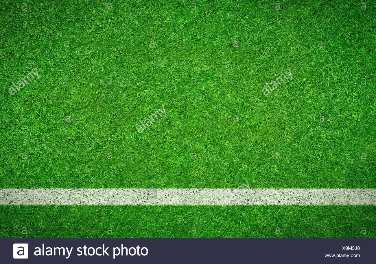 Fussballrasen Mit Waagrechter Linie Stock Photo 281339696