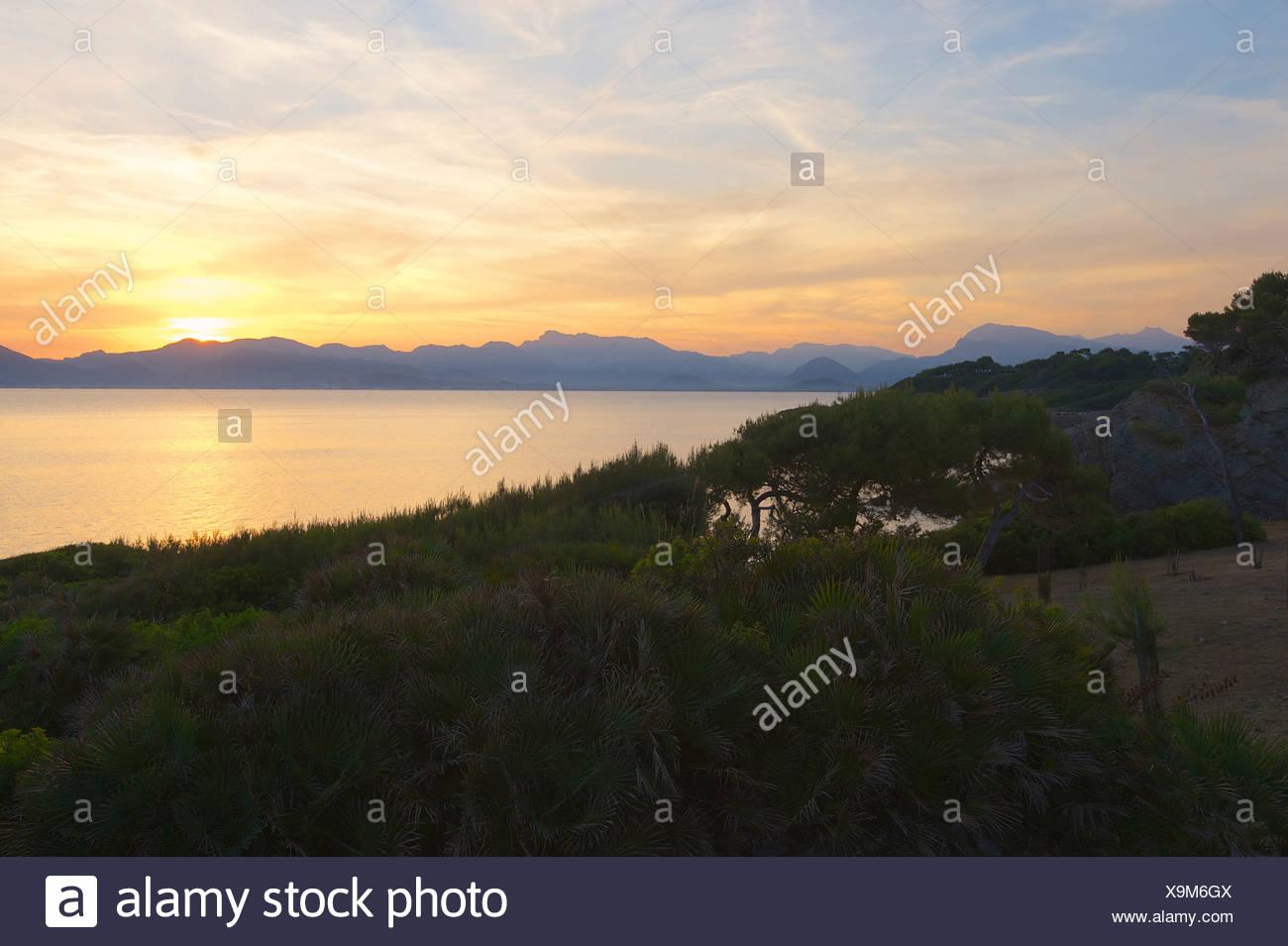 Balearic Islands, Majorca, Mallorca, Spain, Europe, outside, Alcudia, coast, seashore, coasts, seashores, coastal scenery, coast - Stock Image