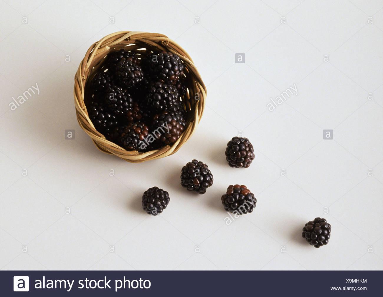 Blackberries spilling out of basket - Stock Image