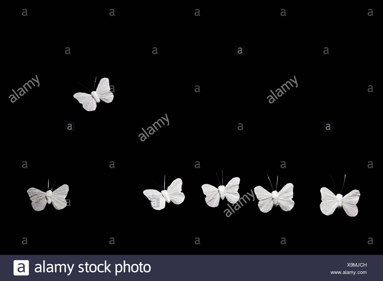 Butterfly flying away from others - Stock Image
