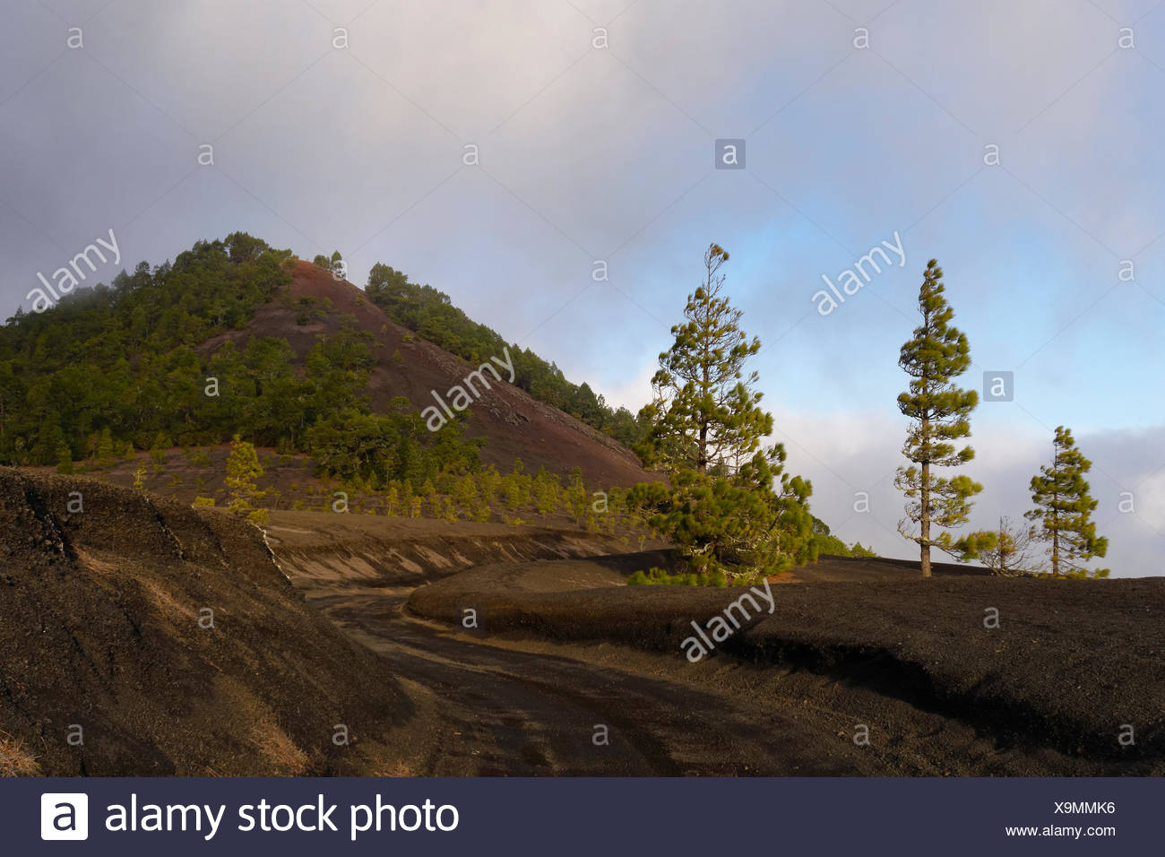 Montaña Quemada, dirt road in Llano de Jable at El Paso, La Palma, Canary Islands, Spain - Stock Image