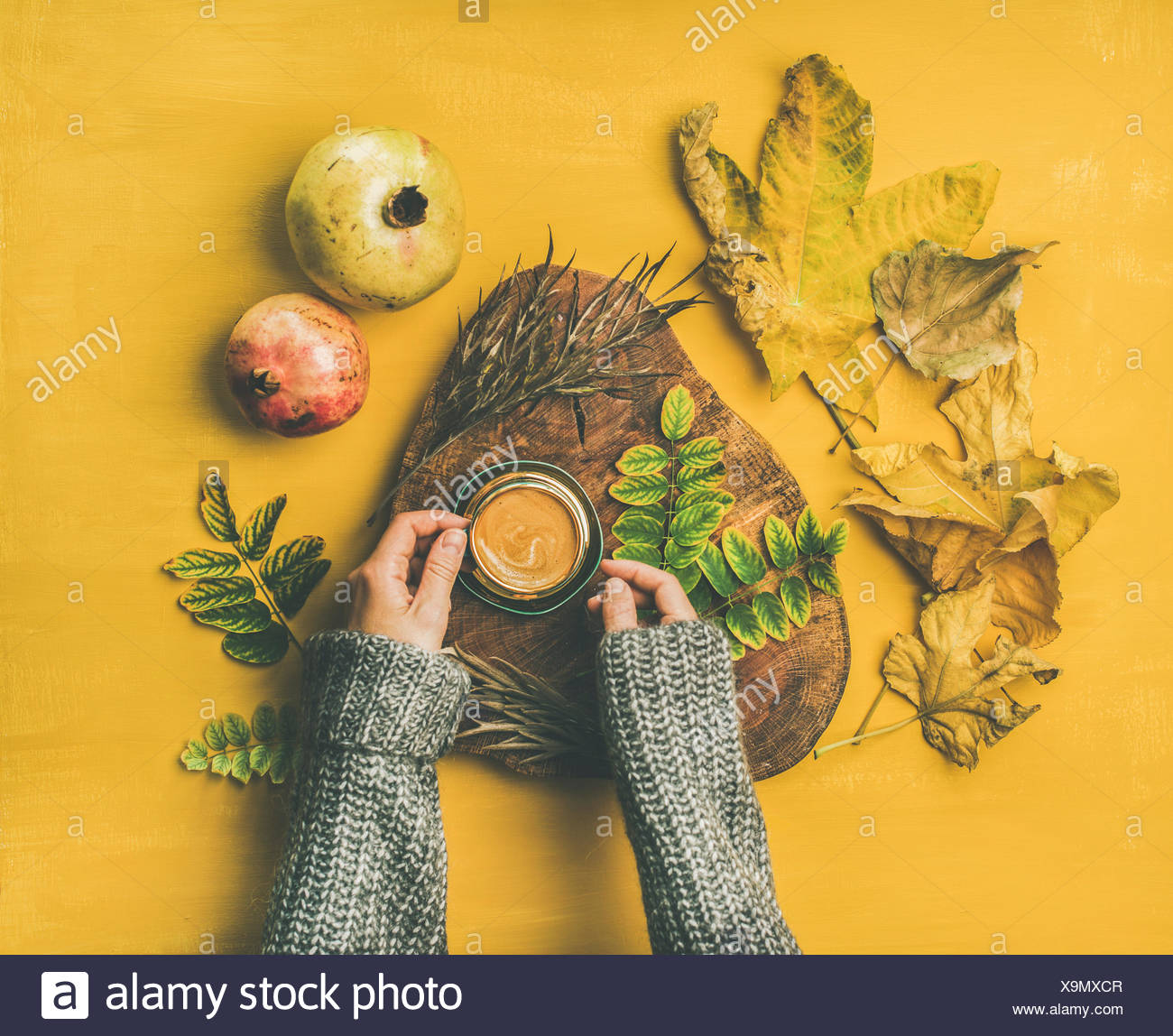 Autumn morning coffee concept. Flat-lay of woman' s hands in grey woolen sweater holding cup of espresso over mustard yellow background with dried fal - Stock Image