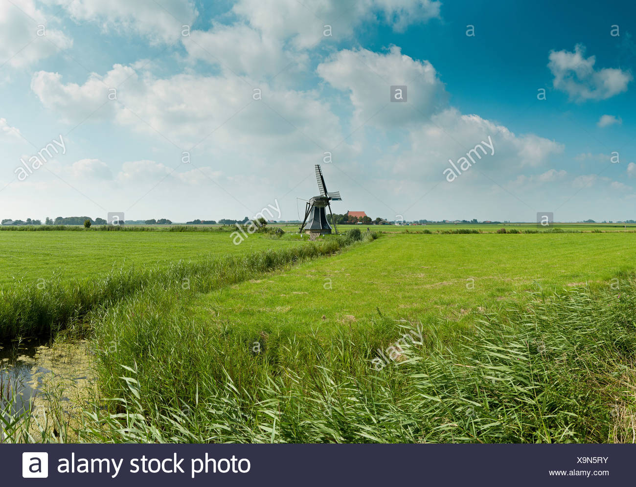 Netherlands, Holland, Europe, Workum, Draining-mill, windmill, field, meadow, summer, - Stock Image