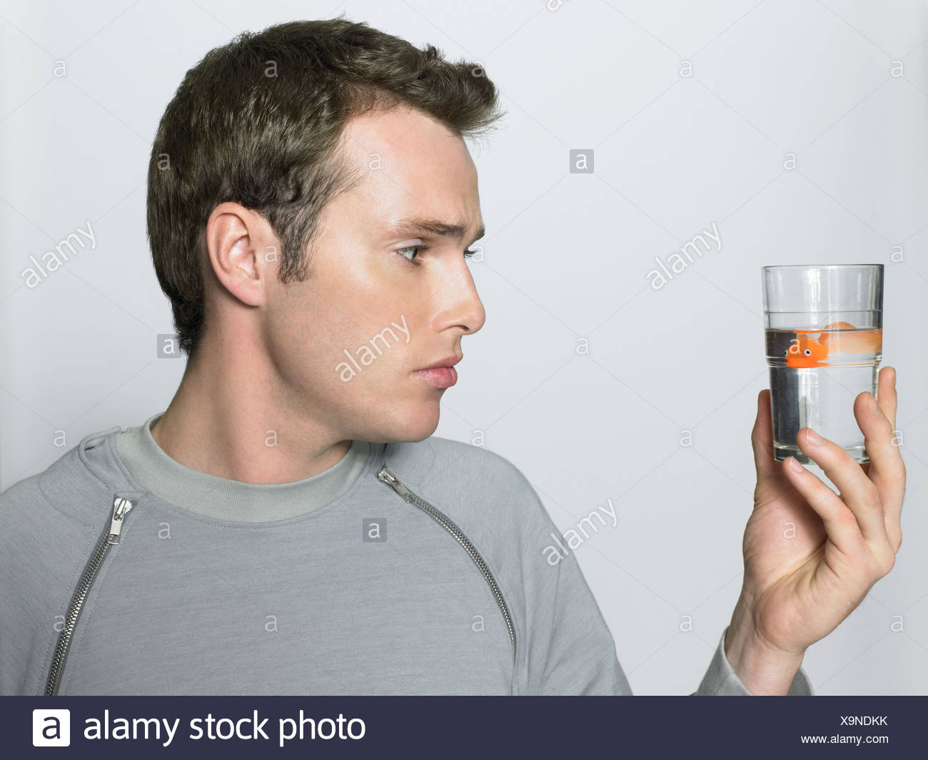 Man with goldfish in his glass - Stock Image