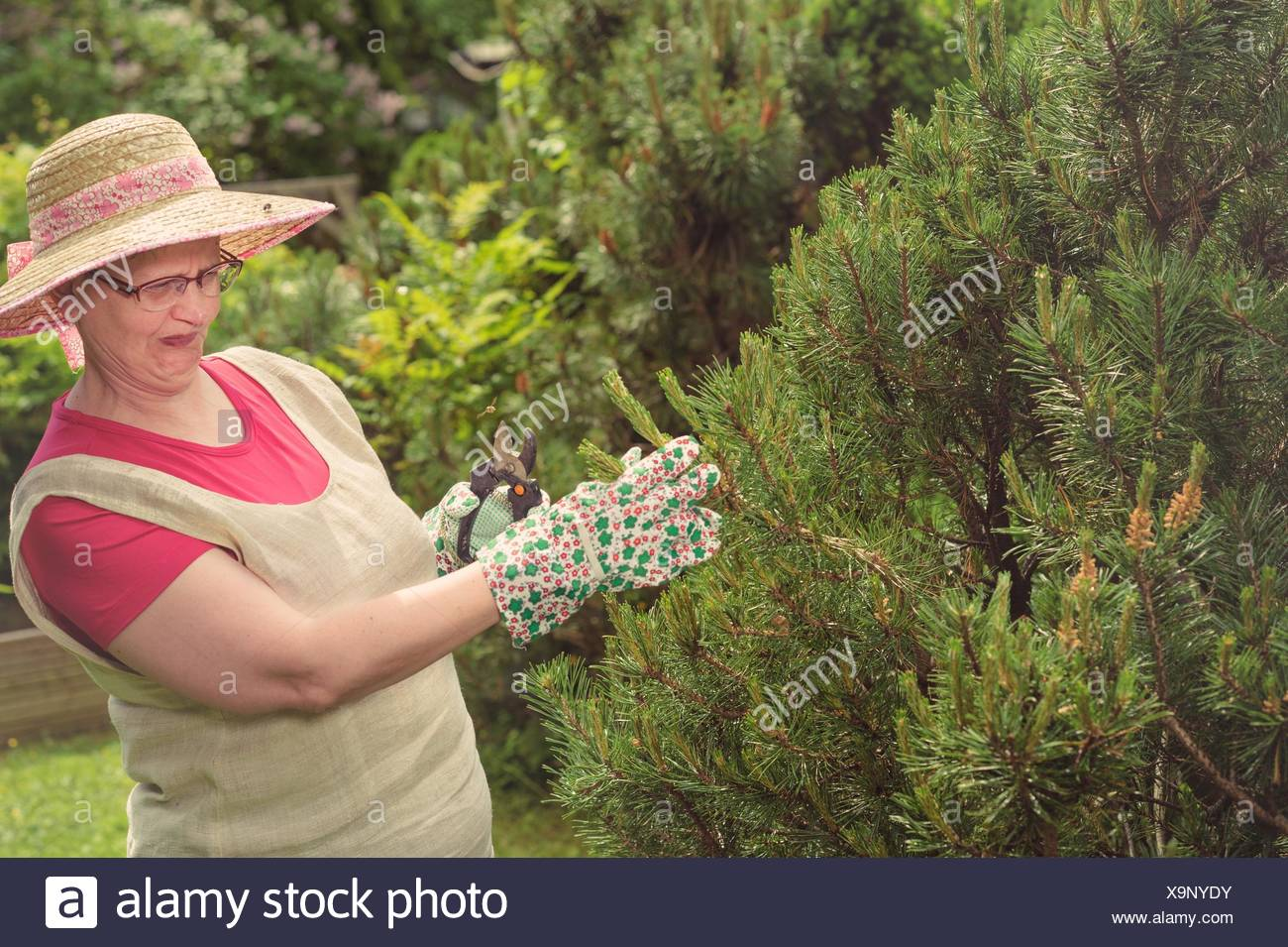 Mature woman and the wasp in the garden, cross processed image. - Stock Image