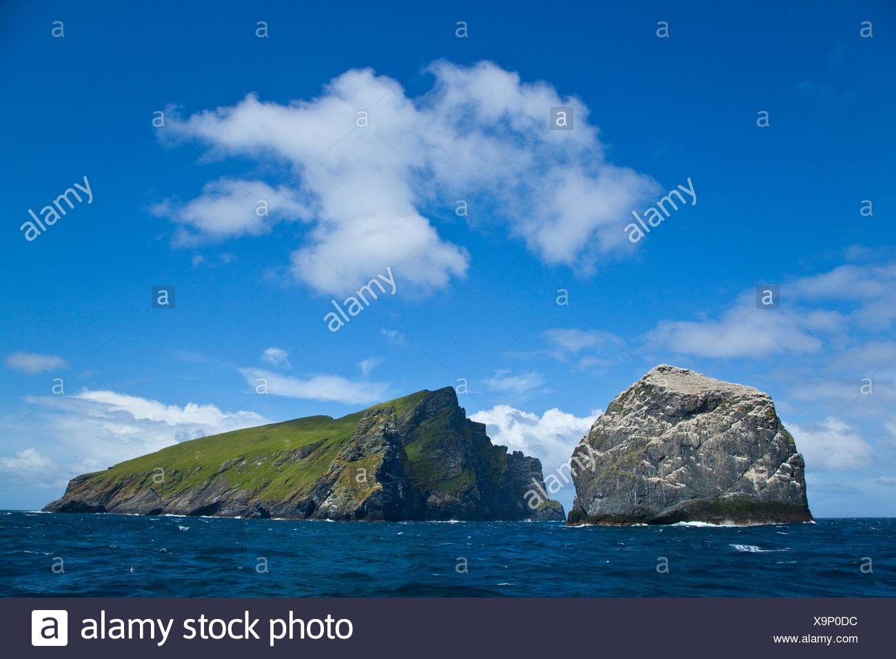 Stac Lee and Boreray Islands. Gannet colony. St. Kilda Archipelago. Outer Hebrides. Scotland, UK. - Stock Image