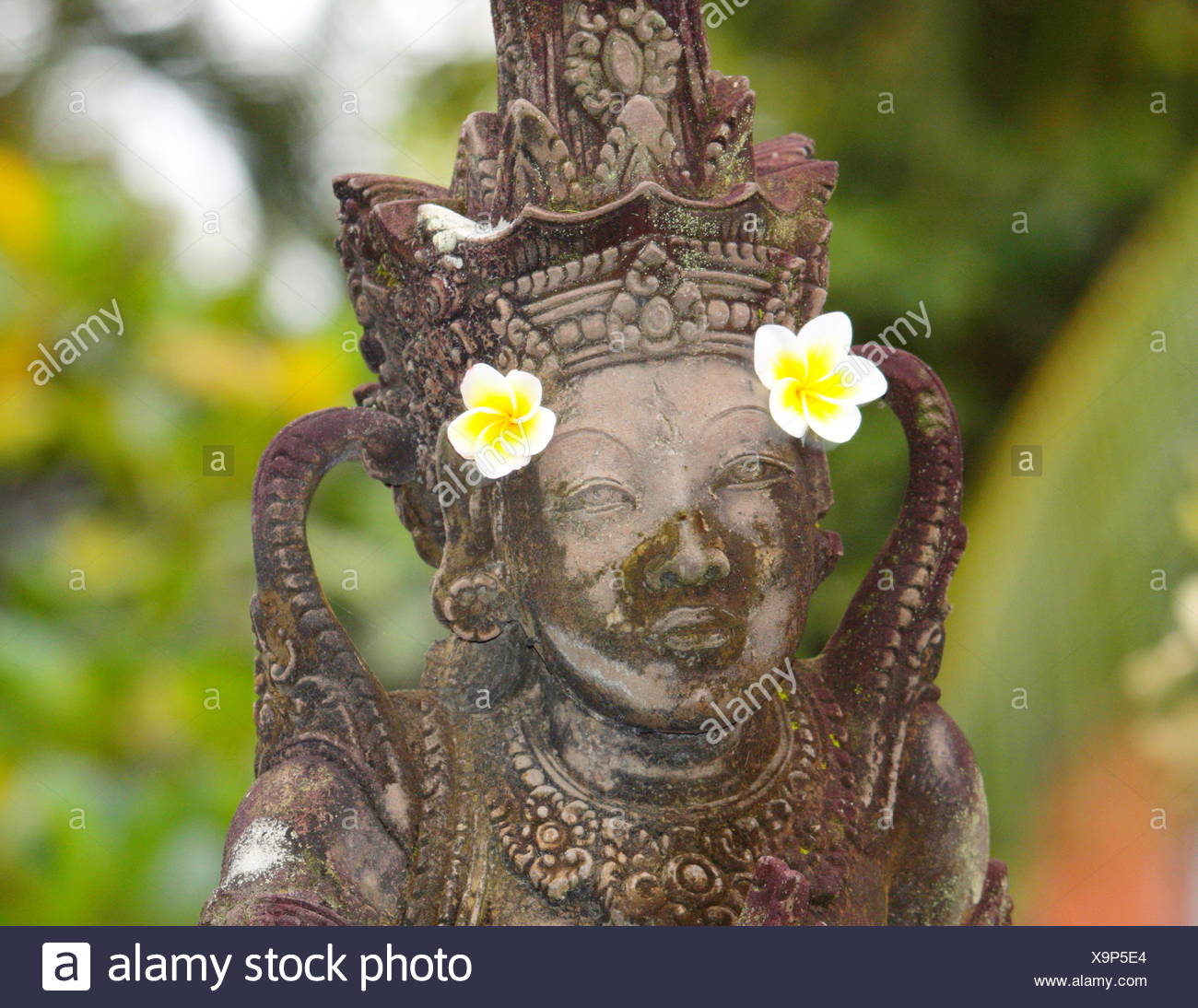 Bali 2 - Stock Image
