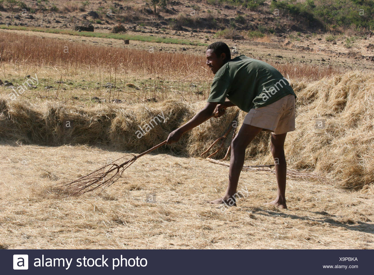 Africa Ethiopia Konso a crude wooden pitchfork - Stock Image